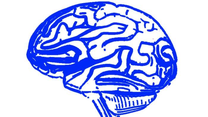 distorsiones de la memoria